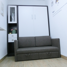 Folding wall bed with sofa